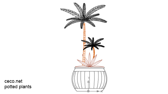 autocad drawing decorative potted plants kentia palm in Garden & Landscaping, Plants Bushes