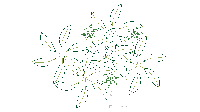 autocad drawing garden croton - green leaf plant greenleaf in Garden & Landscaping, Plants Bushes