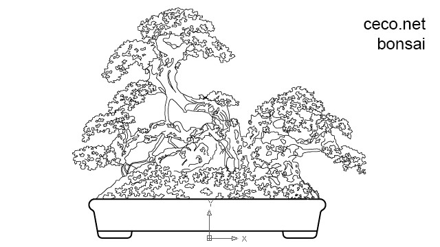 autocad drawing japanese pine bonsai in Garden and Landscaping, Plants Bushes