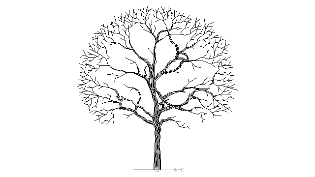 autocad drawing tree without leaves in Garden & Landscaping, Trees
